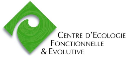logo-cefe1